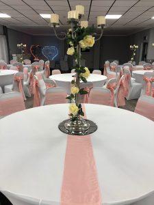 Wedding Pink Sashes Zoom